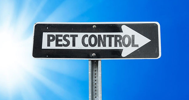 Business Pest Control in and near Brooksville Florida