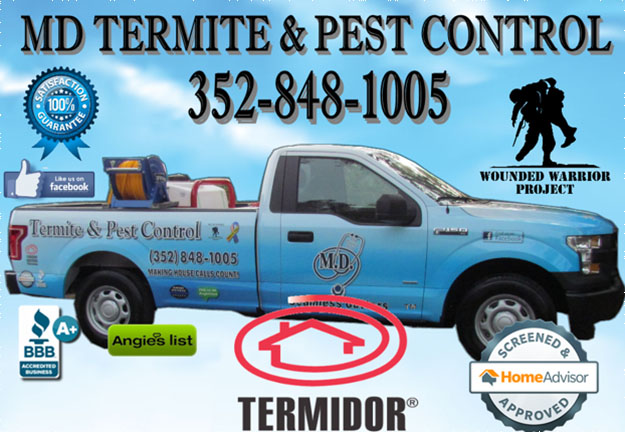 Pest Control in and near Tampa, Spring Hill Florida