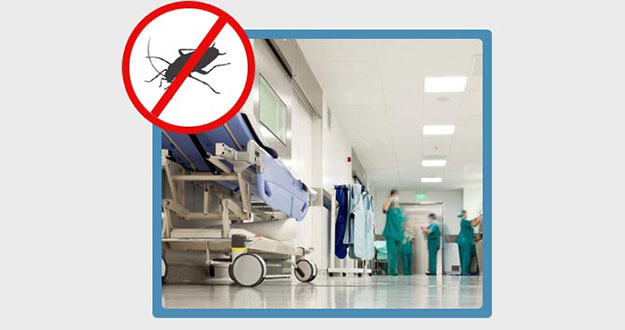 Doctor Office Pest Control in Florida