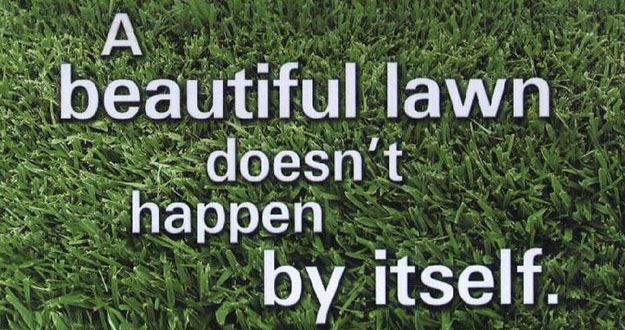 Lawn Fertilization in and near Lutz Florida
