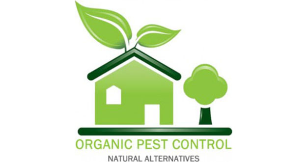 Organic Pest Control in and near Palm Harbor Florida