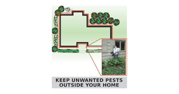 Perimeter Pest Control Sprays in and near Palm Harbor Florida