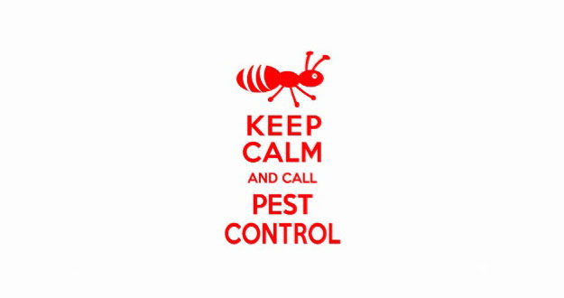 Preventative Pest Control in and near Tarpon Springs Florida